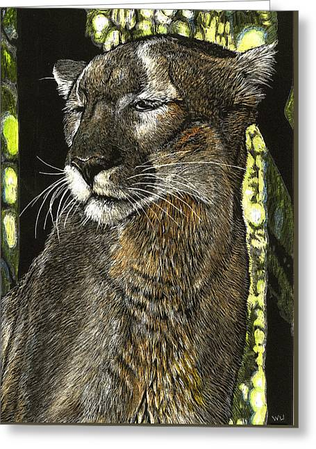 Panther Contemplates Greeting Card