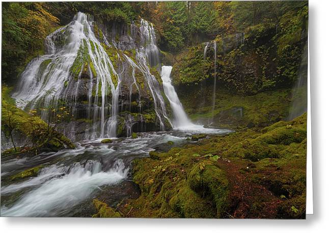 Panther Creek Falls In Autumn Greeting Card by David Gn