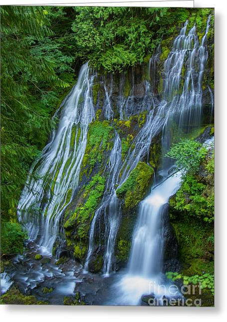 Panther Creek Falls Summer Waterfall 1 Greeting Card