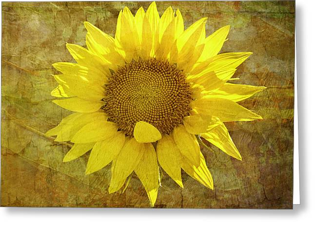 Greeting Card featuring the photograph Paper Sunshine by Melinda Ledsome