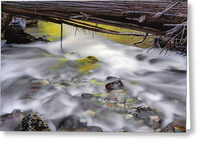 Papoose Creek Greeting Card by Leland D Howard