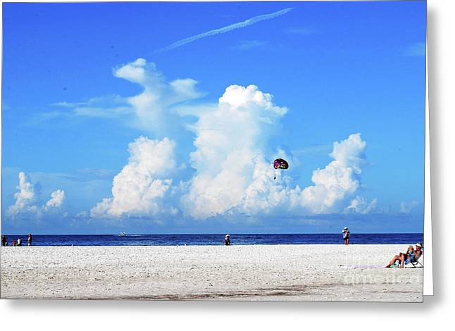 Greeting Card featuring the photograph Para Sailing On Siesta Key by Gary Wonning