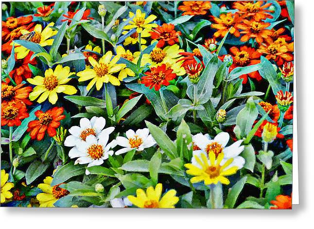 Parade Of Flowers One - Horizontal Greeting Card