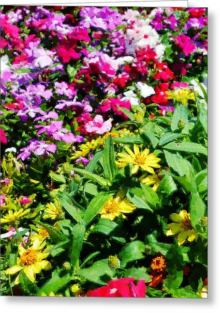 Parade Of Flowers Three - Vertical Greeting Card