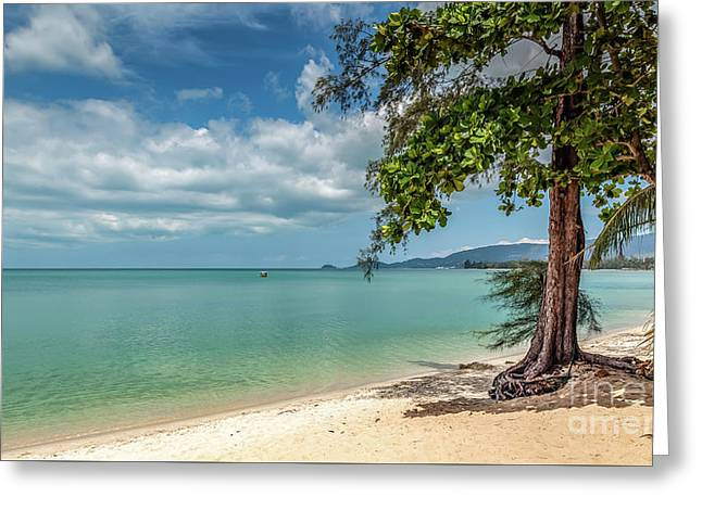 Paradise Greeting Card by Adrian Evans
