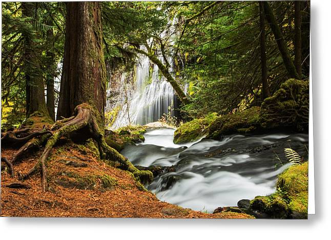Paradise At Panther Creek Greeting Card by Angie Vogel