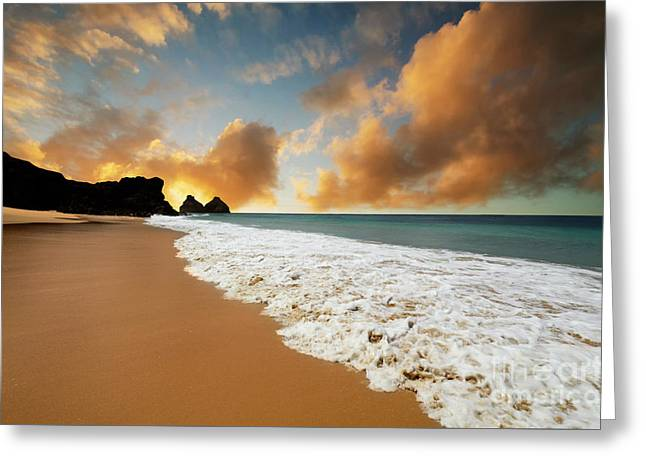 Paradise Greeting Card by Bob Christopher