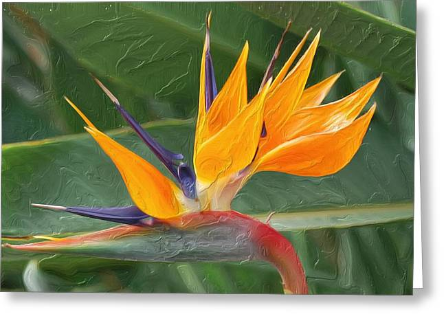 Paradise II Painting Greeting Card by Don  Wright