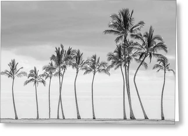 Paradise In Black And White Greeting Card