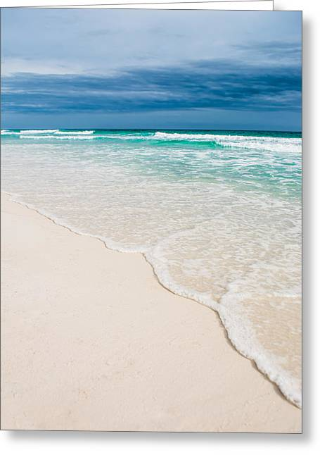 Paradise In Seaside Florida Greeting Card by Shelby Young
