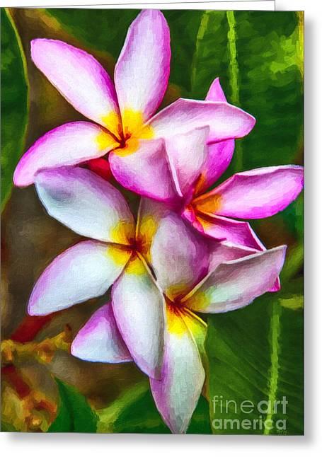 Paradise Pink Plumeria Greeting Card by David Millenheft