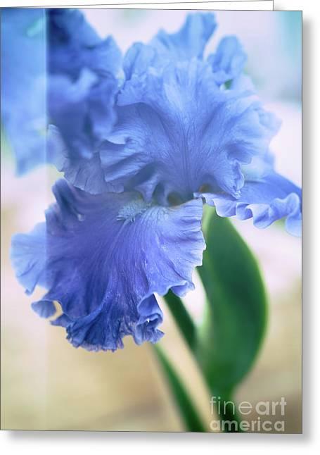 Parallel Botany #5254 Greeting Card by Andrey Godyaykin