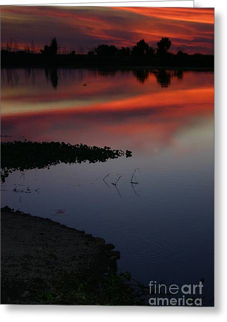 Parana Sunset Greeting Card
