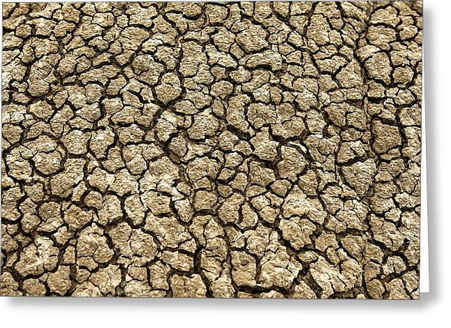 Parched Soil Greeting Card by Todd Klassy