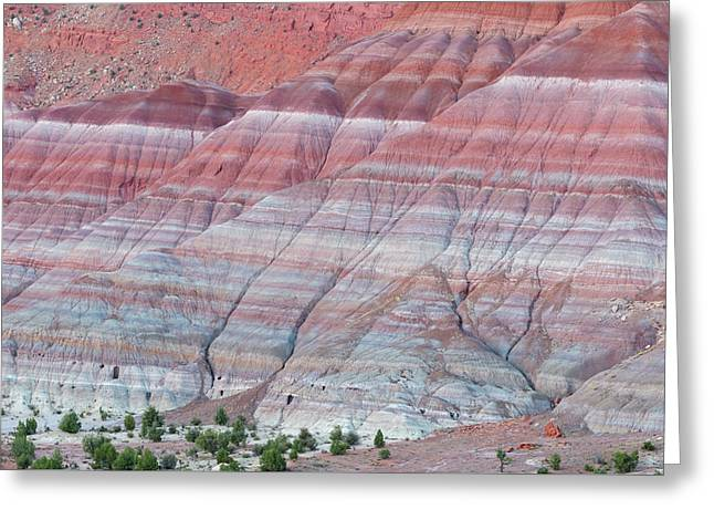 Greeting Card featuring the photograph Paria Canyon by Chuck Jason
