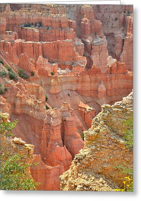 Pariah Point Overlook Greeting Card by Ray Mathis