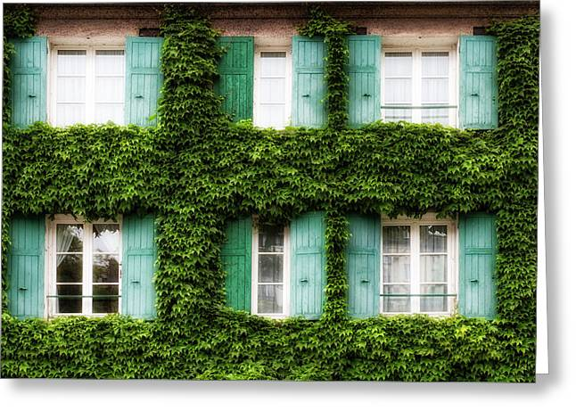 Paris Ivy Covered Windows Greeting Card by Georgia Fowler
