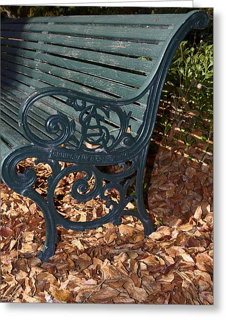 Park Bench In Autumn Greeting Card by Geoff Bryant