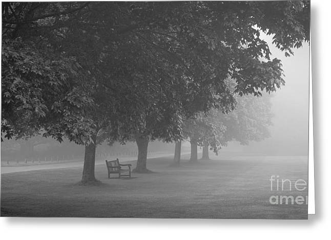 Park Bench In The Mist Greeting Card by Richard Thomas