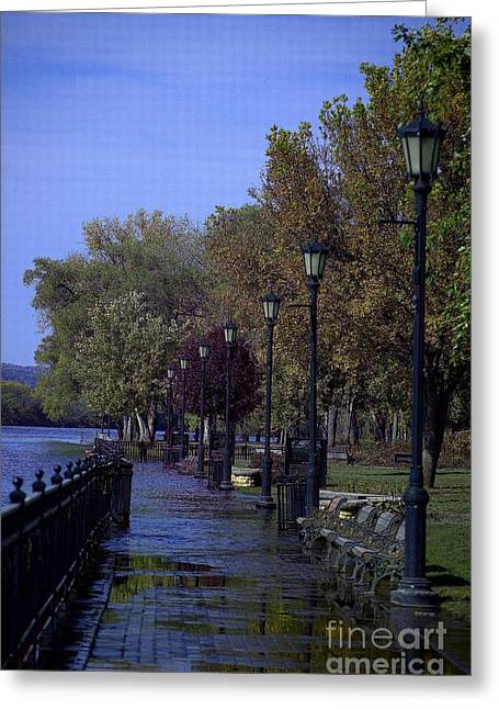 Park In Flood Greeting Card