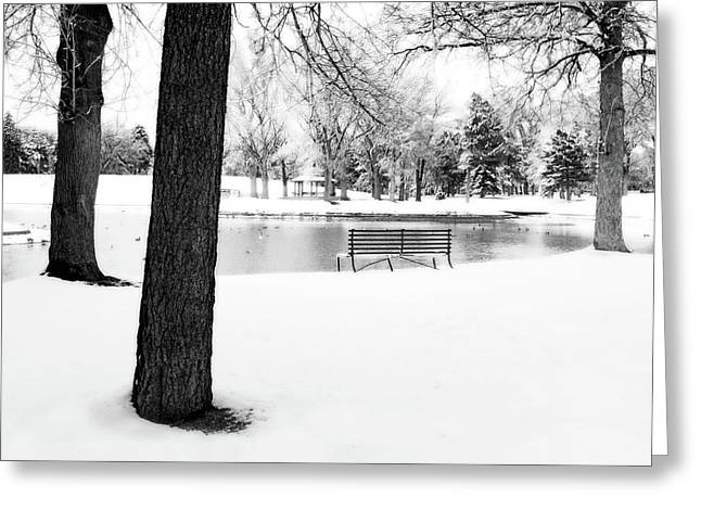 Winter Park Greeting Cards - Park in Winter Greeting Card by Utah Images