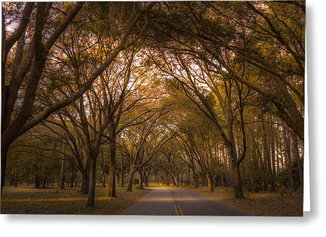 Park Overhang Greeting Card by Marvin Spates