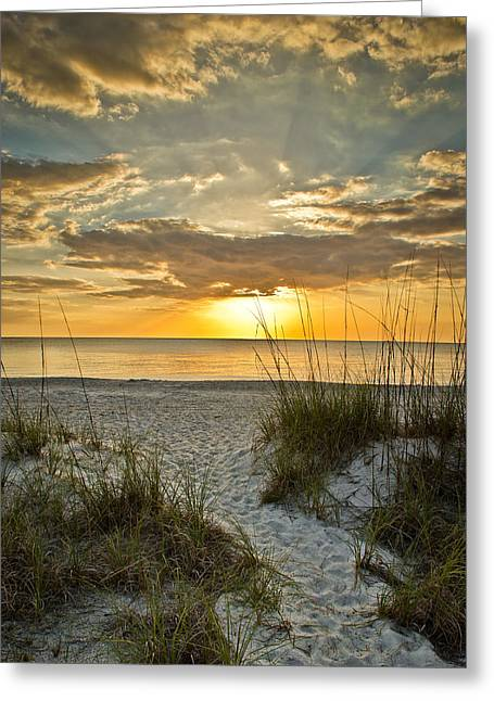 Park Shore Sunset Greeting Card