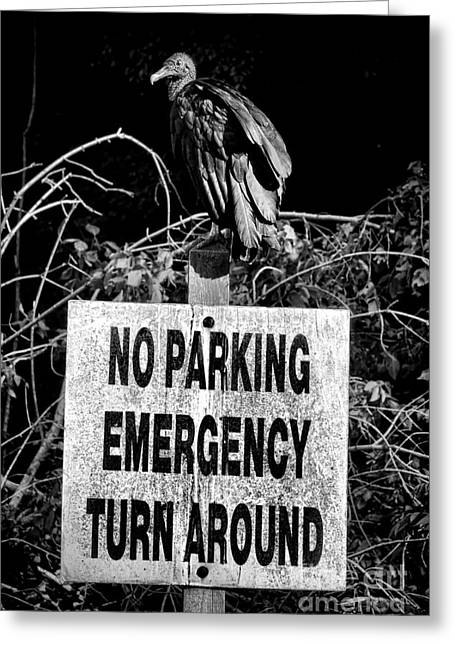 Parking Enforcement Greeting Card by Olivier Le Queinec
