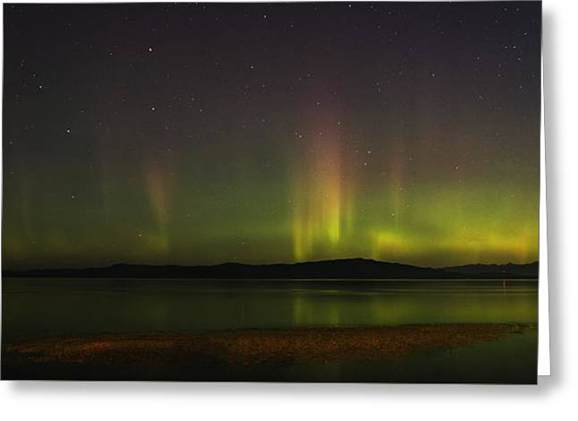 Parksville Bay Aurora Greeting Card by Randy Hall