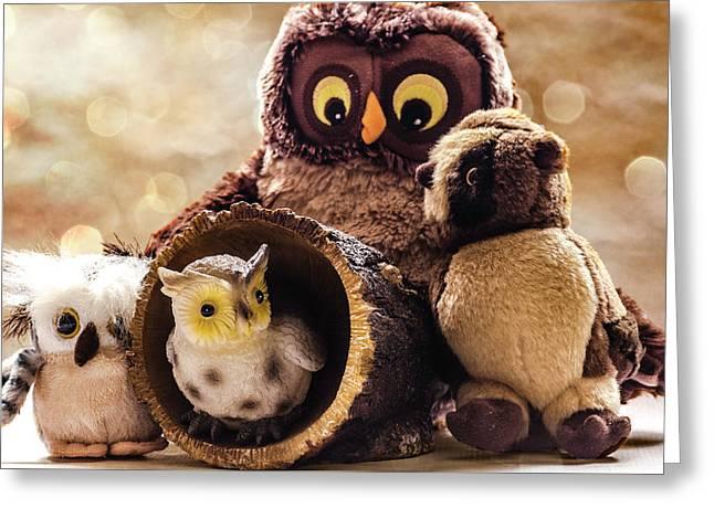 Parliament Of Owls Greeting Card by Martina Fagan