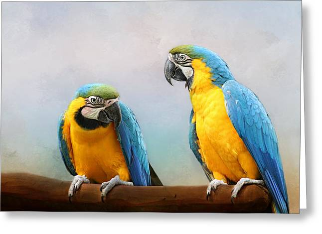 Parrot Greeting Card by Heike Hultsch