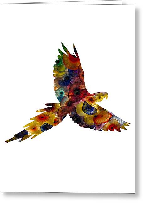 Greeting Card featuring the photograph Parrot by Michael Colgate