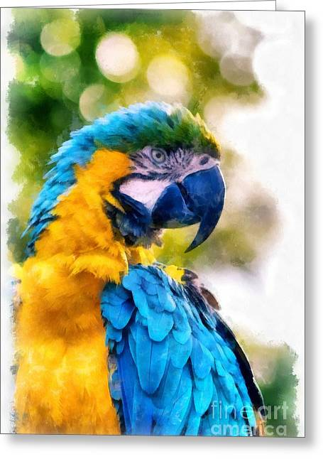 Parrot Watercolor Greeting Card by Edward Fielding