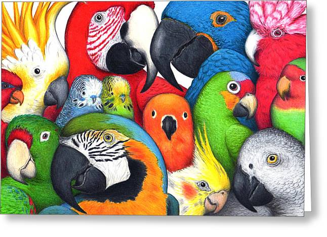 Parrotheads Greeting Card by Don McMahon