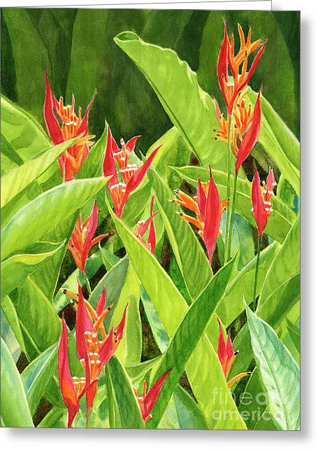 Parrots Flower With Background Greeting Card