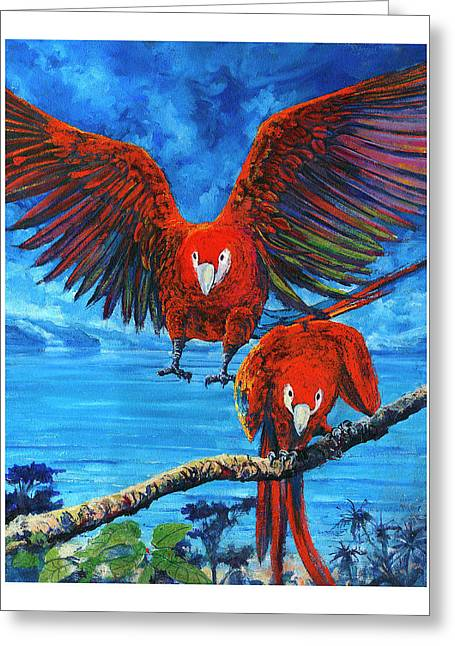 Parrots In Costa Rica Greeting Card
