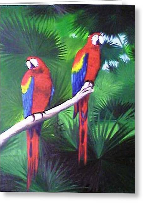 Parrots Molly And Polly Greeting Card