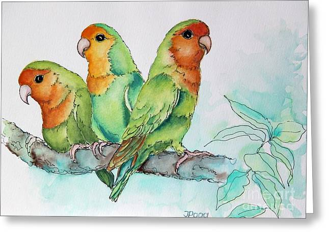 Parrots Trio Greeting Card