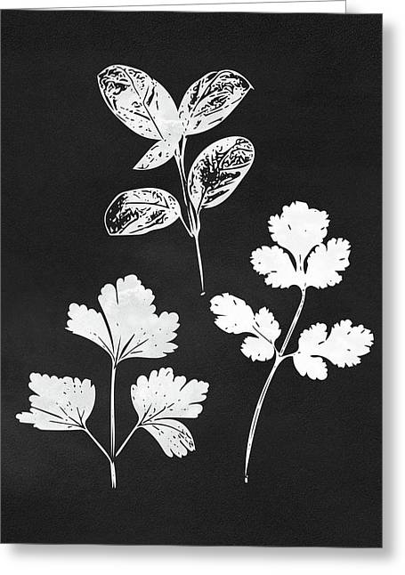 Parsley Cilantro Basil Leaves- Art By Linda Woods Greeting Card