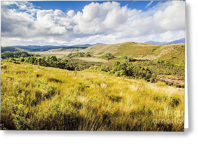 Parting Creek Regional Reserve Tasmania Greeting Card by Jorgo Photography - Wall Art Gallery