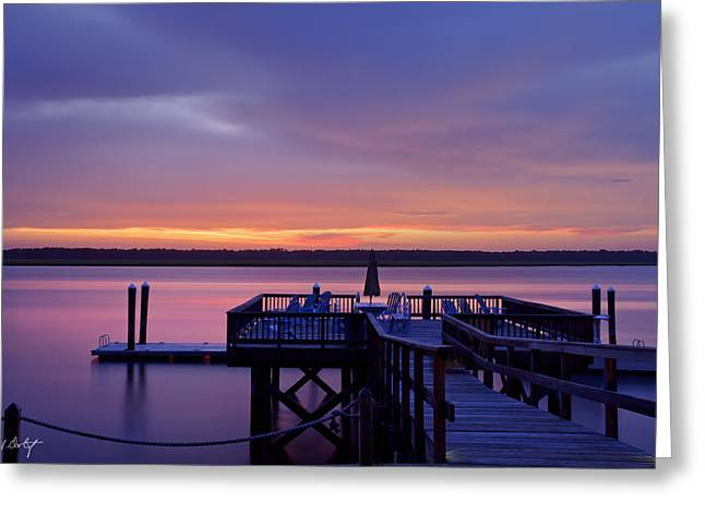 Party Dock Greeting Card by Phill Doherty