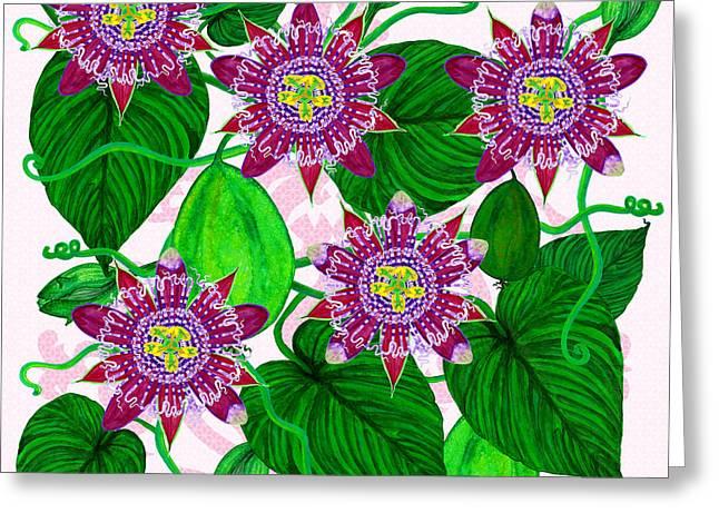 Passiflora Alata Greeting Card