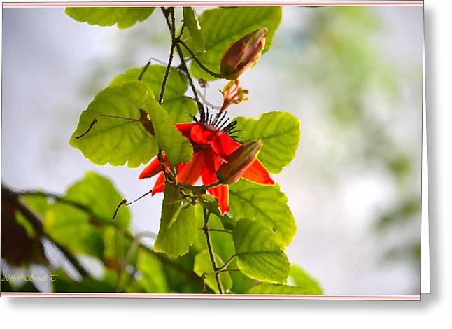Passiflora Vine Greeting Card by Sonali Gangane