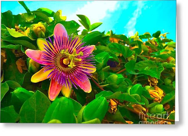 Passiflora Greeting Card by Wonju H