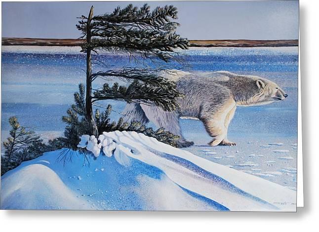 Wildife Paintings Greeting Cards - Passing By  Polar Bear Greeting Card by Santo De Vita
