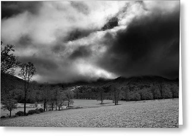 Greeting Card featuring the photograph Passing Snow In North Carolina In Black And White by Greg Mimbs
