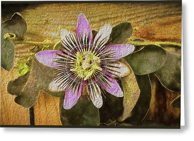 Passion Flower Greeting Card by Kenneth Roberts
