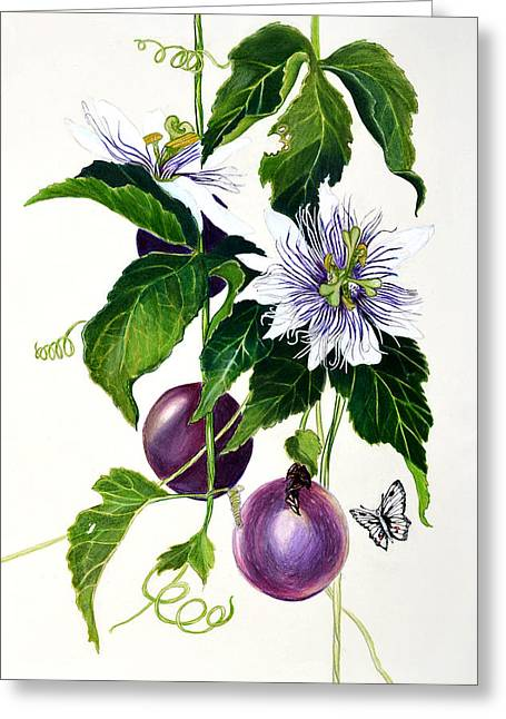 Passion Fruit Greeting Card by Lorraine Romaior