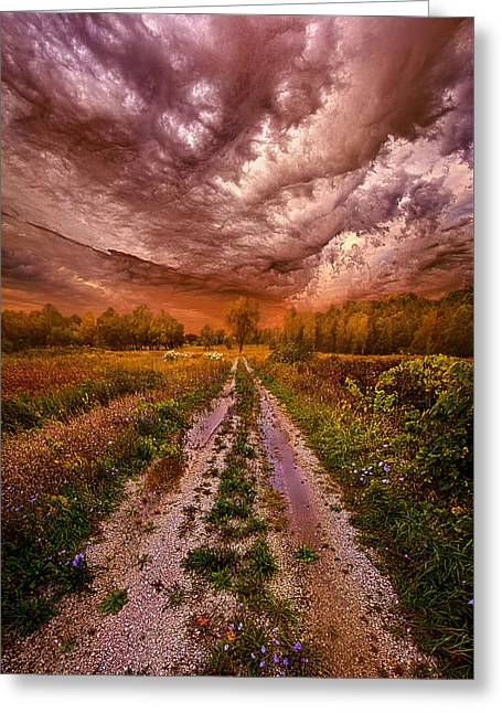 Passion Within Chaos Greeting Card by Phil Koch