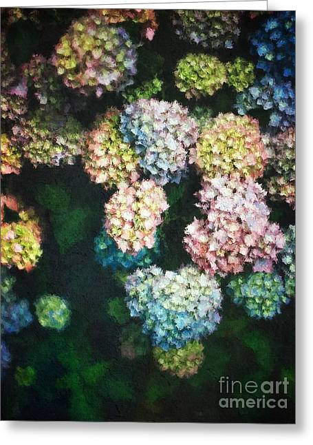 Pastel Colored Hydrangeas Greeting Card by Amy Cicconi